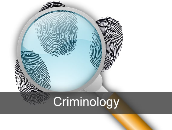 language-criminology